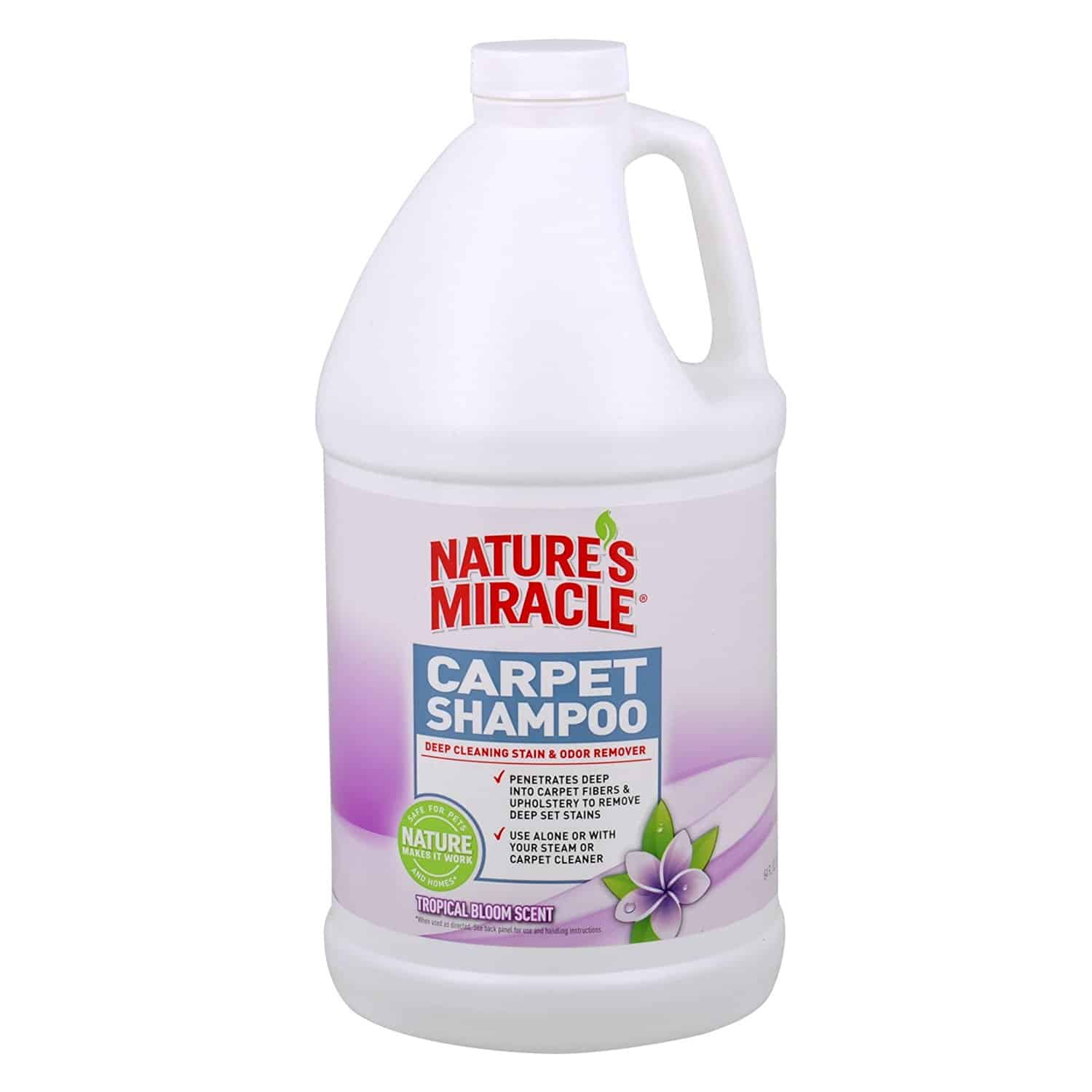 Best Carpet Cleaning Solution For Deep Stains Home