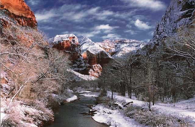 Zion National Park in the winter.